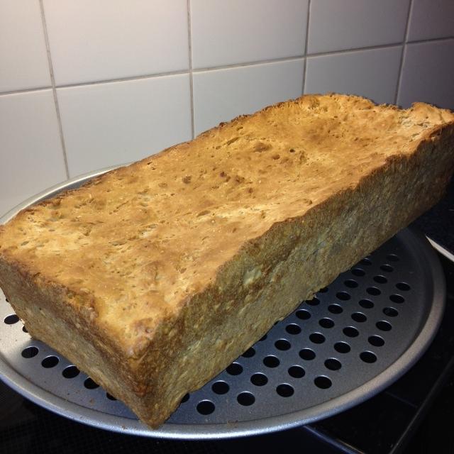 haverbrood groot